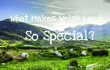What makes Welsh Lamb so special?